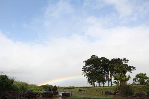 hawaii20110521 100.JPG