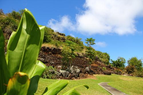 hawaii20110522 134.JPG