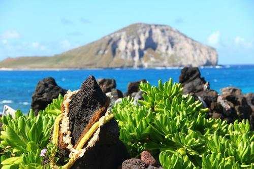 nc hawaii20110522 332.JPG