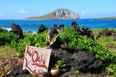 nc hawaii20110522 326.JPG