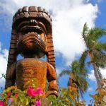 ①②候補 nc-hawaii20110516