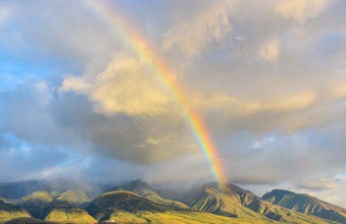 ハワイ語 OHANA…オハナ、という本当の意味(改定)